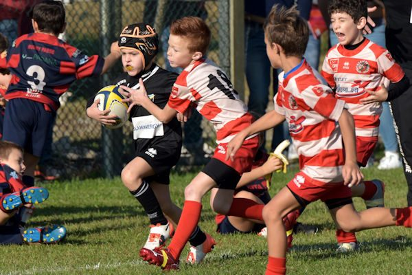Rugby Day 2017