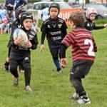 Torneo di Mini-Rugby Città di Udine