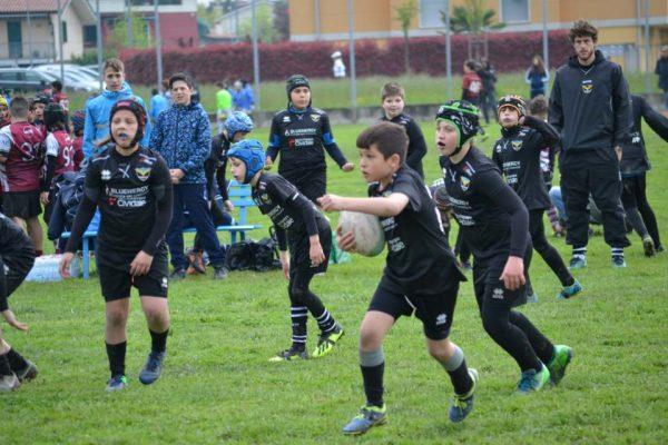 Mini-Rugby a San Donà di Piave
